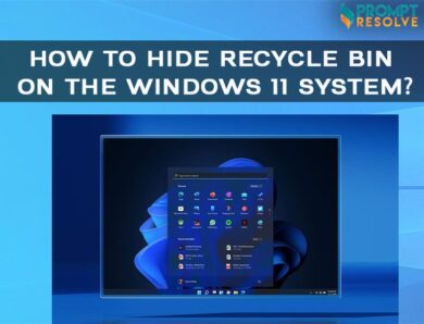 HOW TO HIDE RECYCLE BIN ON THE WINDOWS 11 SYSTEM?
